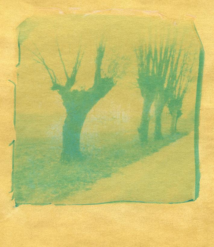 In Cammino Verso...02