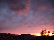 Sunset in backyard on July 1, 2009 005