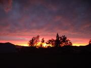 Sunset in backyard on July 1, 2009 004