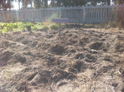 Freshly Sown Patch At McRorie Community Garden