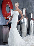 Mermaid/Trumpet Strapless Applique Zipper Lace Bridal Gowns