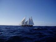 Nearing Bermuda - 2004