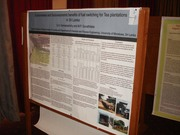 My poster at 13th International Forestry & Environmental Science Symposium
