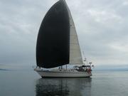 downwind sail in light air