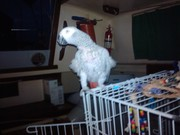 Photo uploaded on May 6, 2012