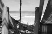 Playa Larga 6