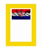Croatian NGSM Issues