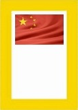 Chinese NGSM Issues