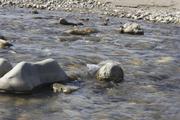 12. El agua y las piedras