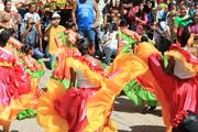 ALFOMBRAS DE FLORES ARAIRA 2013 (4)