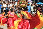ALFOMBRAS DE FLORES ARAIRA 2013 (3)