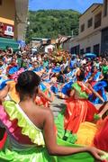 ALFOMBRAS DE FLORES ARAIRA 2013 (1)