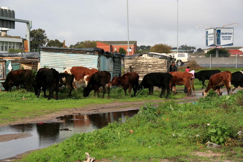 township visit
