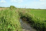 Block 4 UNVDA farms - irrigation canal