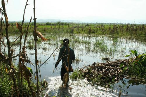 Block 4 UNVDA farms - flooded