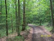 St. Jude Trail ride in Pelham,Tn.