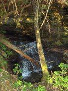 Timber Ridge Thanksgiving 09 002