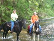 Laurel Hill Lake Trailride 8-28-2010