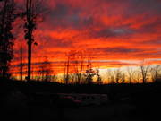 Timber Ridge Sunset