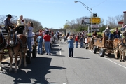 MULE DAY PARADE 2011