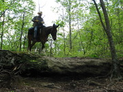 Red Hill Horse Camp 2011, Livingston Ky.