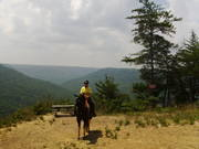 This Horse Is Silent trail ride @ East Fork this past weekend.