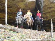 Daniel Boone National Forest October 2011