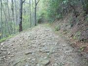 bote mt trail