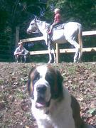 Easton riding Stroker