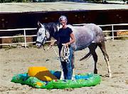 Unnatural Horsemanship Photos