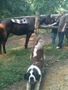 The Boys and Olga saddled up Star