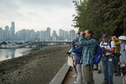 Bird Week: Bird Monitoring in Stanley Park