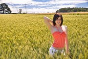 Wheat field's look so cool on camera