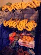 fruit rack 5/3/13
