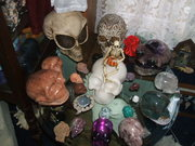 My Crystal Skull Family