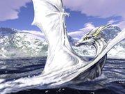 White Air Dragon