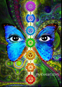 butterfly and chakras awakened