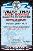 12 Khan De Muay Thai  DIPLOMA ORGANIZACION