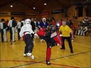 2004 International Kenpo Championships Dublin Ireland