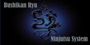 Capelli Bushikan Ryu Ninjutsu El Paso Texas