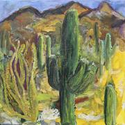 Wüstenerfahrung II amerikanischer Südwesten