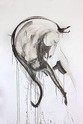 the black horse (part3)