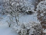 Tél Novemberben 2010 Böblingen
