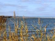 A Fertő-tó csücske