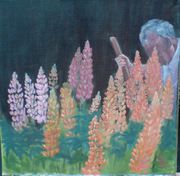 Gardener and his Lupins