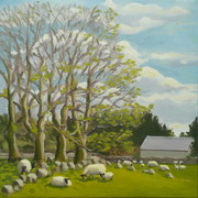 Cool spring day in mayo 2012