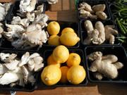 * lemon - ginger - mushrooms *