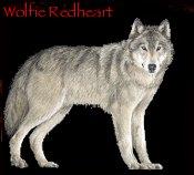 Wolfie Redheart10