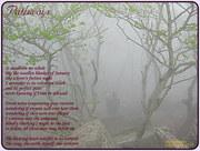 drum fog