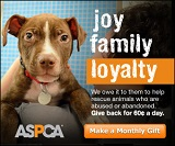 ASPCA_300x250_PersonalHook_Loyalty_x_4_12_13